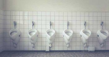 consommation, toilette ou wc unisexe, toilette neutre
